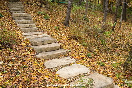 Rosetta® Irregular Steps - Mountain Rustic